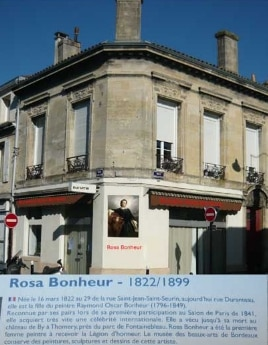 Rosa bonheur1