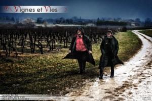 vignes et vies 1